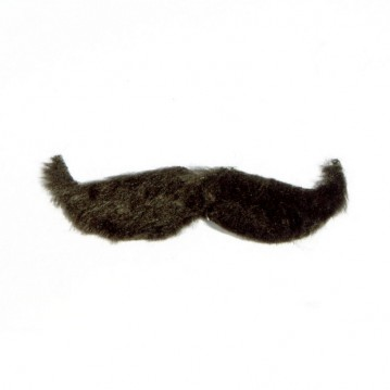 Overskæg Hercule Poirot